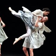 Фестиваль  «Современный танец. 25 лет в Петербурге» фотографии