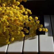 Концерт «Музыка среди Цветов» фотографии