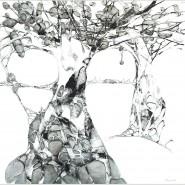 Выставка «Сад Камней» фотографии