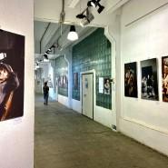 Выставка «Картины хотят быть видимыми» фотографии