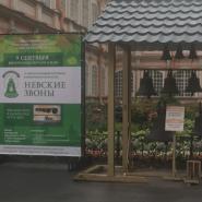 Фестиваль колокольного искусства «Невские звоны» 2018 фотографии