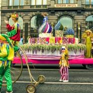 Фестиваль Цветов 2019 фотографии
