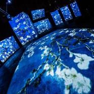Выставка «Ван Гог — Живые полотна» фотографии