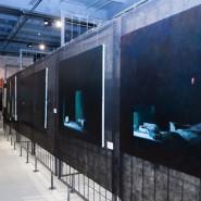 Выставочный проект New Collection фотографии