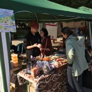 Молодежный фестиваль «Этнопикник» 2017 фотографии