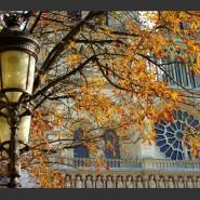 Фестиваль «Парижская Осень» 2016 фотографии