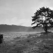 Выставка «Наедине» фотографии