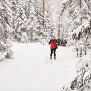Лыжные стрелы 2020 фотографии
