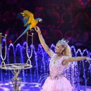 Шоу «Волшебные фонтаны — 13 месяцев» фотографии