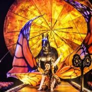 Путешествие по стране снов от команды Cirque du Soleil онлайн фотографии