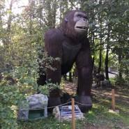 Открытие  Музея динозавров «Динопарк» фотографии