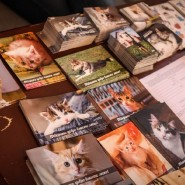 Выставка «Разноцветные коты» фотографии