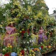 Фестиваль  «Парад цветов» на Дворцовой площади 2017 фотографии