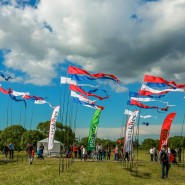 Пушкинский фестиваль воздушных змеев 2016 фотографии