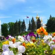 Топ-10 интересных событий вСанкт-Петербурге навыходные 25 и 26 июля 2020 фотографии