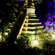 Экскурсия «Реалити-шоу: магия амазонской ночи»  фотографии