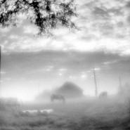 Выставка «Ленинградская независимая фотография конца ХХ века» фотографии