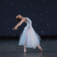 Шоу «Балет под звездами «Времена года» 2020 фотографии