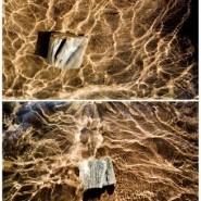 Выставка «Подводная библиотека» фотографии