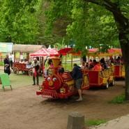 День города Сестрорецк в парке «Дубки» 2018 фотографии