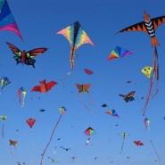 Фестиваль воздушных змеев в Новой Голландии фотографии