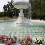 Топ-10 интересных событий в Санкт-Петербурге на выходные 15 и 16 сентября фотографии