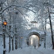 «Зимний вечер света» в Царском Селе 2016 фотографии