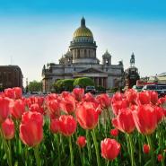 Топ-10 интересных событий в Санкт-Петербурге на выходные 26 и 27 мая фотографии