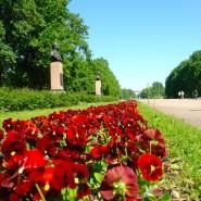 Московский парк Победы фотографии