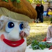 Фестиваль грибов и ягод в Санкт-Петербурге 2017 фотографии