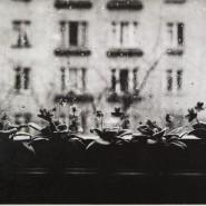 Цикл лекций «Петербургская фотография конца ХХ — начала ХХI века в лицах» фотографии
