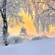 Топ-10 интересных событий в Санкт-Петербурге на выходные 26 и 27 января фотографии