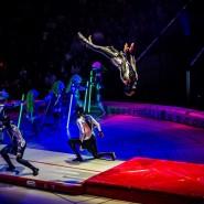 Новогоднее цирковое шоу «OFU. Приземление» фотографии