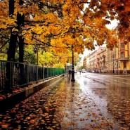 Топ-10 интересных событий в Санкт-Петербурге на выходные 9 и 10 ноября фотографии