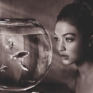 Выставка «Мечты» фотографии