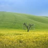 Выставки «Открывая Италию. Базиликата» и «Сны Лукании» фотографии