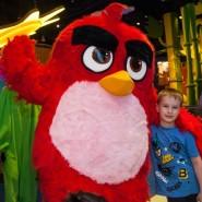 Праздник Beauty Day в Angry Birds Activity Park фотографии
