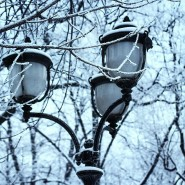 Топ-10 интересных событий в Санкт-Петербурге на выходные 1 и 2 декабря фотографии