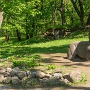 Выставка «Парк Монрепо — уникальный памятник садово-паркового искусства XVIII-XIX веков» фотографии