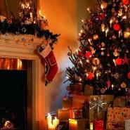 Рождественские экскурсии в Строгановском Дворце фотографии