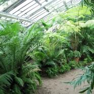 Тематические экскурсии по Тропическому маршруту фотографии