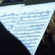 Музыкальный променад-фестиваль «Петербургские вечера» 2018 фотографии
