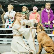 Шоу «Собаки мира» фотографии