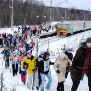 Массовые лыжные старты «Лыжные стрелы» 2018 фотографии