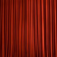 Виртуальная выставка «Мир Венской оперы» фотографии