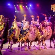 Премьера «Новогоднее шоу Гии Эрадзе» 2016 фотографии