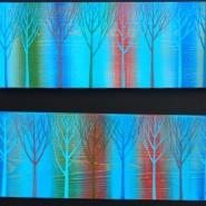 Выставка Выставка «Северное направление: нашествие цвета - 2» фотографии