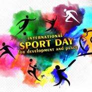 Международный день спорта «ВСпорте Фест 2017» фотографии