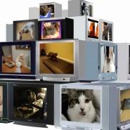«Киберфест»: видеопрограмма «Цифровая Революция» фотографии