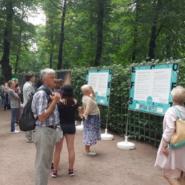 Выставка  «Русалки ненавидят пластик» фотографии